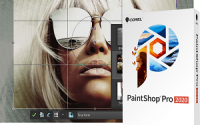 Corel PaintShop Pro 2020 Ultimate 22.2.0.8 Crack with Keygen - [2020]
