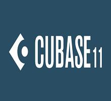 Steinberg Cubase Pro 11 Crack R2R with Serial Key [Torrent Mac]