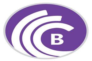 BitTorrent Pro Crack 7.10.5 Build 46011 with Activation Key [Latest]