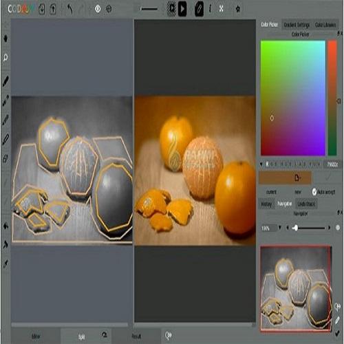 CODIJY Colorizer Pro 4.0.4 Crack Plus Serial Key Latest Download 2021